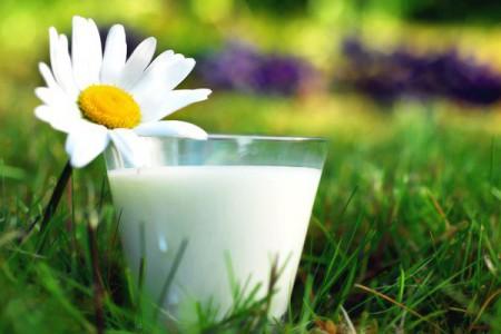 Рецепты с применениемовса и козьего молока фото