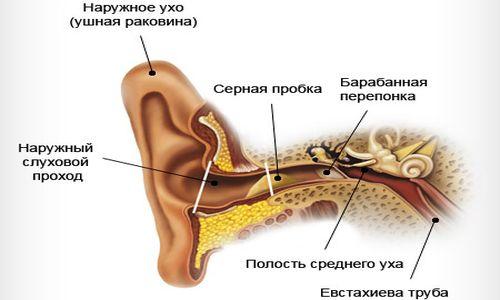 Симптоматика пробки в ушах