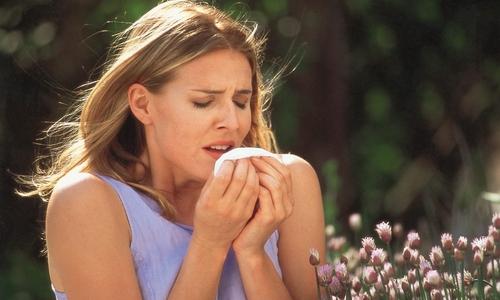 Причины возникновения гайморита у беременных женщин