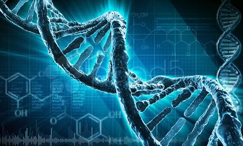 Генетическая расположенность к бронхиальной астме