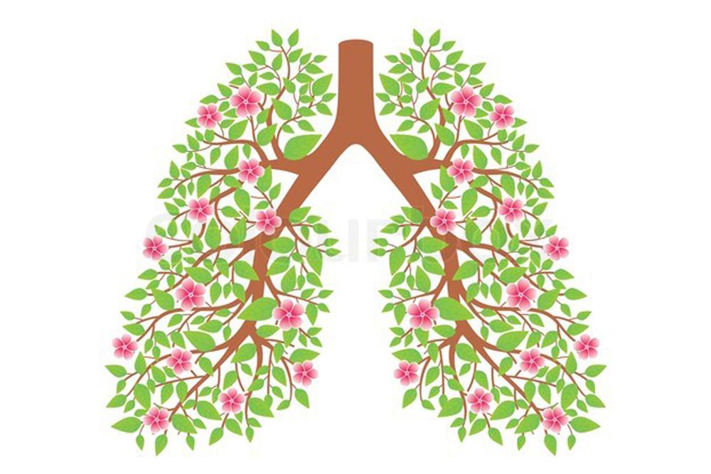 лечебная гимнастика при бронхиальной астме таблица