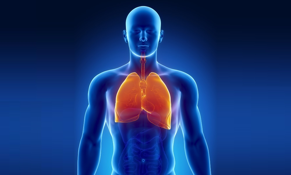 Лечится ли туберкулез легких: можно ли вылечить, излечим полностью или нет, вылечивается, может ли пройти сам без лечения