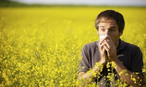 Аллергический фронтит