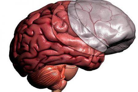 Воспаление оболочек мозга